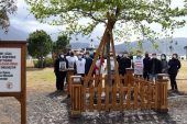 Fethiye'de sağlık çalışanları için anıt ağaç dikildi