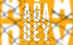 Türkiye Fransızca Çeviri Ödülü, Ebru Erbaş'ın oldu